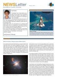 Newsletter 2/2011 - Universe Cluster