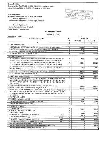 Bilantul Camerei de Comert, Industrie si Agricultura ... - CCIA Sibiu