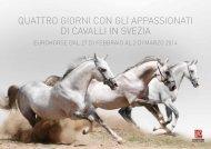 quattro giorni con gli appassionati di cavalli in svezia - EuroHorse