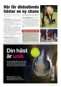 kstf-h på Eurohorse - Page 5