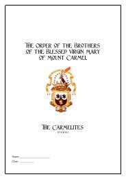 The Carmelites for Schools - the Irish Province of the Order of ...