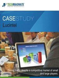 SEO Case Study- Lucintel