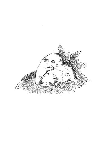 Ilustraciones Laia GR.pdf