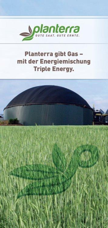 Download der Triple Energy-Broschüre