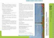 Erneuerbare Energien - Naturwissenschaftliche Fakultät II - Chemie ...