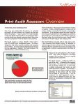 Print Audit Assessor: Overview - Page 2