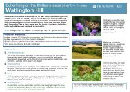 Watlington Hill - Butterfly Walk - Walk4Life