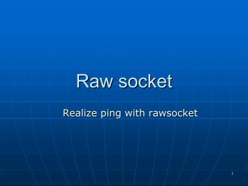 Raw socket