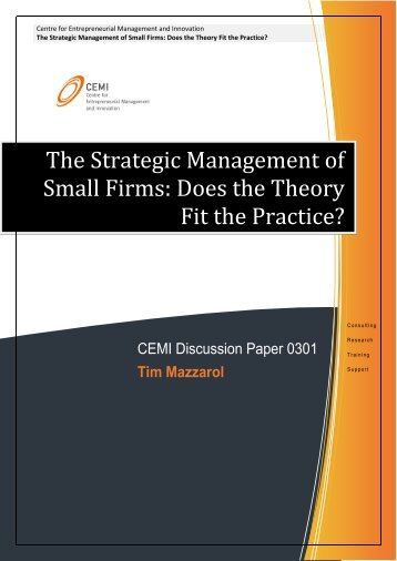 The Strategic Management of Small Firms: Does the Theory ... - CEMI