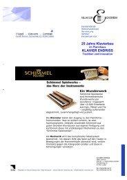 SCHIMMEL Spielwerk - Klavier Endriss
