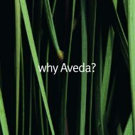 why Aveda? - Gossips Hair & Beauty