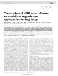 The structure of H5N1 avian influenza neuraminidase suggests new ...