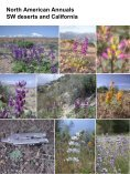 Diversity and Evolutionary History of Lupins – Insights ... - Lupins.org - Page 7
