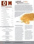 Summer of OTIS FUN - Otis McAllister Inc. - Page 2