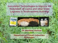 Inoculation Technologies to Improve the Nodulation of ... - Lupins.org