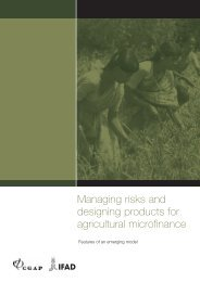 Managing risks and designing products for agricultural microfinance