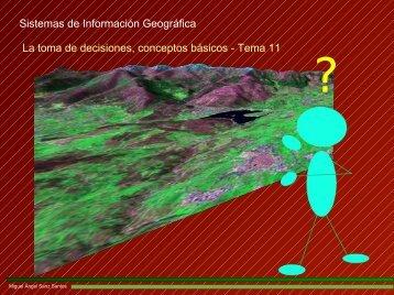 Sistemas de Información Geográfica La toma de decisiones ...