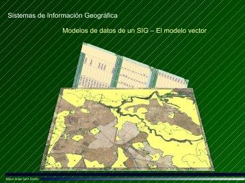 El modelo vector