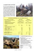 NEUFUNDLAND BRITISH COLUMBIA und YUKON - Page 7