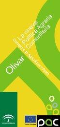 PAC Olivar Andalucía - Infaoliva