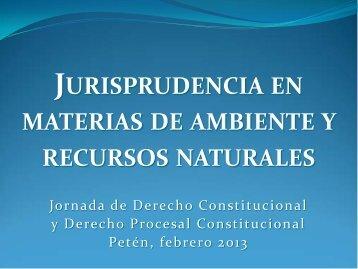 Jurisprudencia en materias de ambiente y recursos naturales por ...
