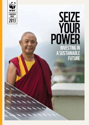 wwf_seize_your_power_campaign_brief_2013