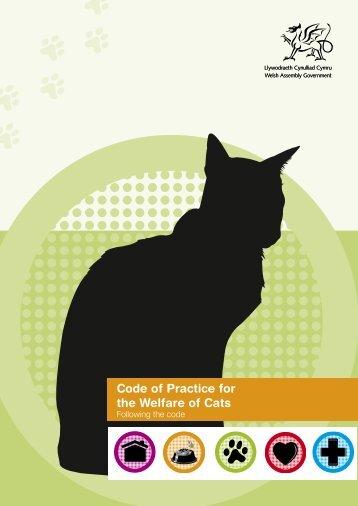 Cat code (part 1)
