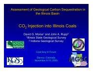 CO Injection into Illinois Coals - Coal-Seq
