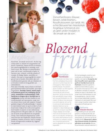 Blozend Fruit - Taste to Taste
