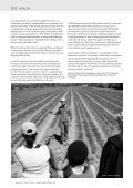 Time for a Greener Revolution - Food Ethics Council - Page 6