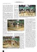 ghn 2 - GGI German Genetics International GmbH - Page 4