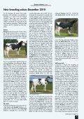 ghn 2 - GGI German Genetics International GmbH - Page 7