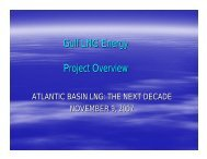 Gulf LNG Energy Project Overview