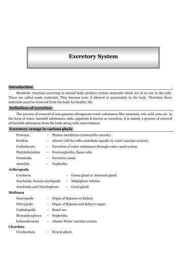 Excretory System - TestBag