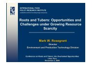 Roots and Tubers: Opportunities and Challenges under Growing ...