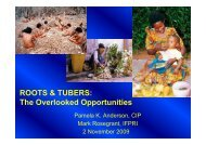 P. Anderson, Mark Rosegrant; ROOTS & TUBERS