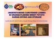 Bechoff A.; Understanding losses of provitamin A after drying and ...