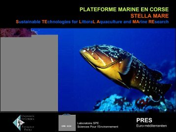 Plateforme Marine