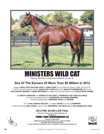 MINISTERS WILD CAT - California Thoroughbred Breeders Association
