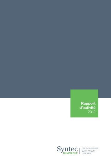 rapport_activite_syntec_numerique_2012.pdf [305.92 Ko]