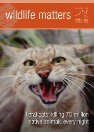 AWC-Wildlife-Matters-Summer-2012-2013