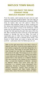 Masson Hill Walk - Matlock Town Council - Page 4