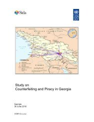 Study on Counterfeiting and Piracy in Georgia. 1Mb -  UNDP Georgia