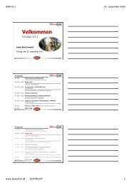 ISO 19 011 vejledning i auditering af ledelsessystemer - Lasse Ahm ...