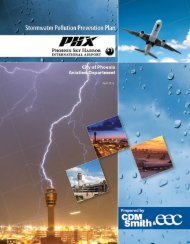 Stormwater Pollution Prevention Plan - Phoenix Sky Harbor ...