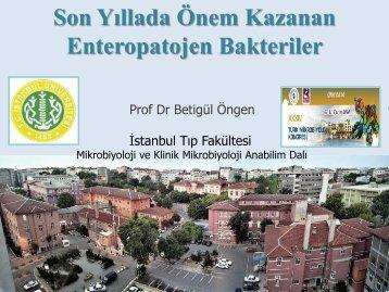 Betigül Öngen - Türk Mikrobiyoloji Cemiyeti