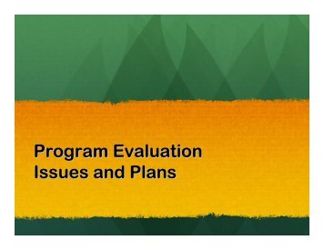 Program Evaluation Issues and Plans