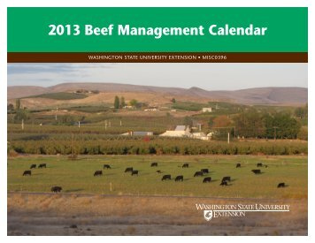 2013 Beef Management Calendar - WSU Extension - Washington ...
