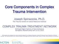 Core Components in Complex Trauma Intervention - WSU Extension