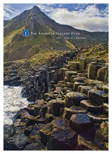 2011 ANNUAL REPORT - The Ireland Funds